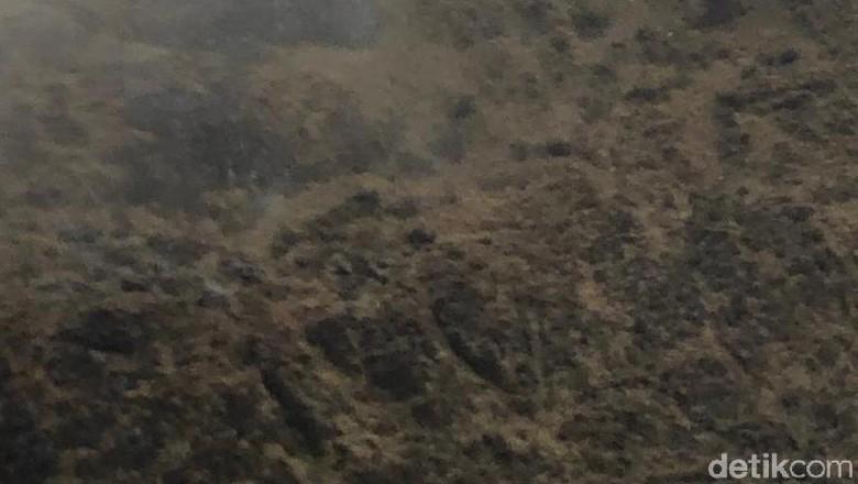 Lokasi Pesawat Twin Otter yang Hilang di Papua Ditemukan