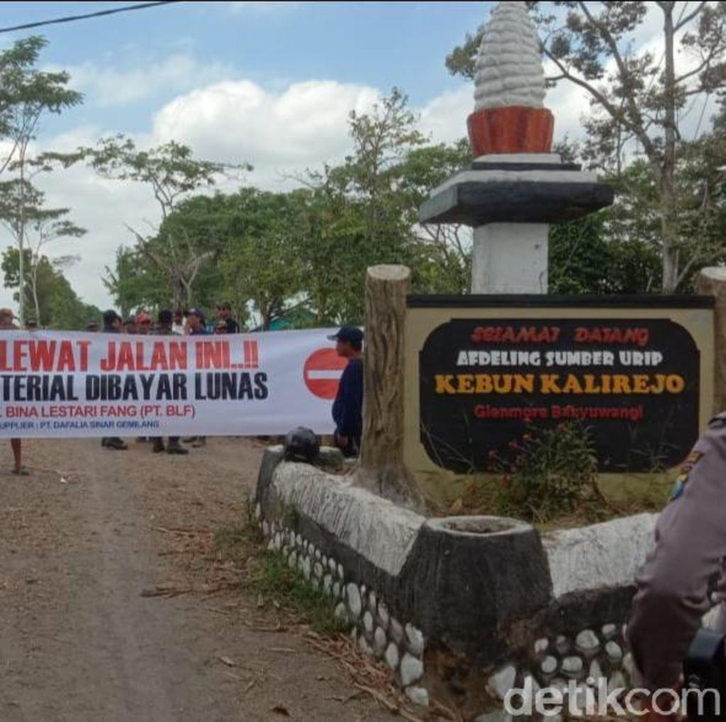 Material Tak Dibayar, Karyawan Lokal Banyuwangi Blokir Jalan Perkebunan