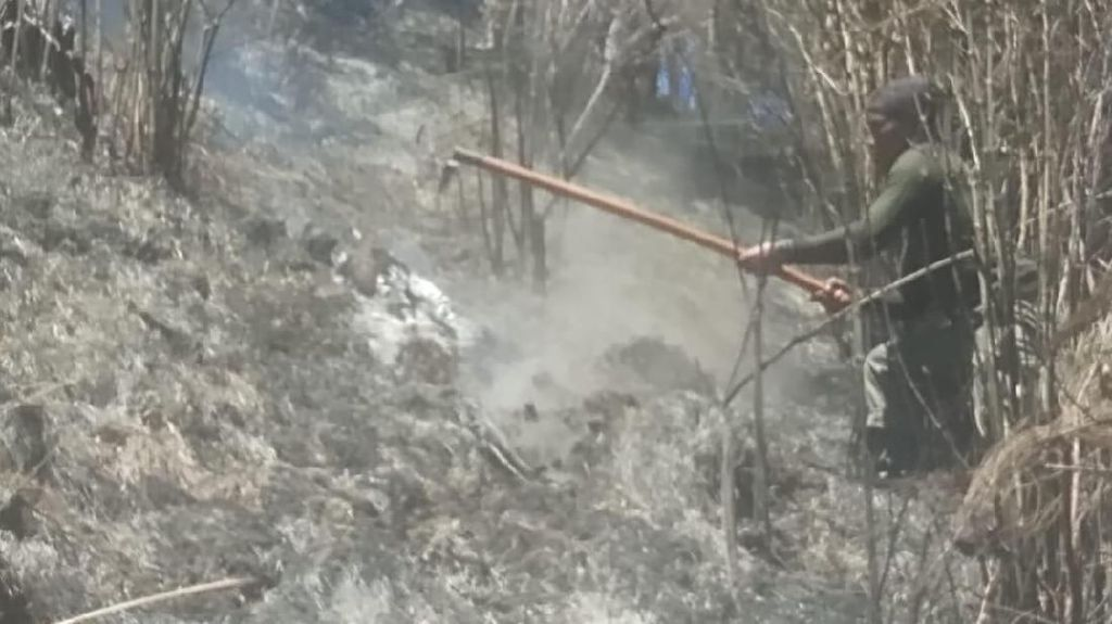 Kebakaran di Gunung Semeru Meluas, Jalur Pendakian Ditutup
