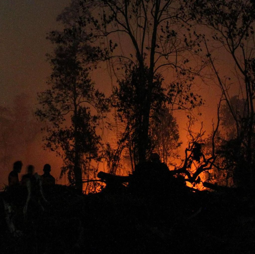 Potret Satgas Karhutla Menembus Malam Padamkan Kebakaran di Riau