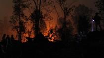 Lagi, Polisi Ringkus Pelaku Karhutla di Riau Pakai Aplikasi Lancang Kuning