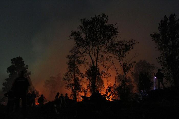 Satgas Karhutla Riau terus berjibaku memadamkan kebakaran lahan di Desa Rimbo Panjang, Kabupaten Kampar, Riau, Minggu (22/9/2019). Kebakaran lahan yang meluas dan mulai mengancam permukiman penduduk di kawasan tersebut membuat petugas terus melakukan upaya pemadaman hingga malam hari. ANTARA FOTO/Rony Muharrman/foc.