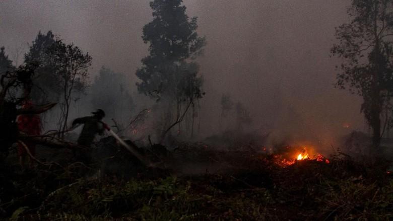 Penanggulangan Karhutla di Riau Telan Biaya Rp 468 M