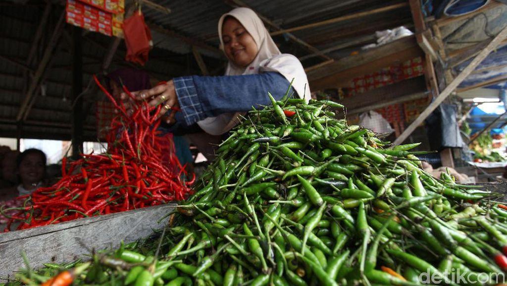 Pasang Surut Harga Cabai di Pulau Simeulue Aceh