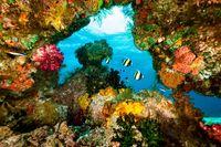 Tempat-tempat Wisata Terancam Turis, Salah Satunya di Papua