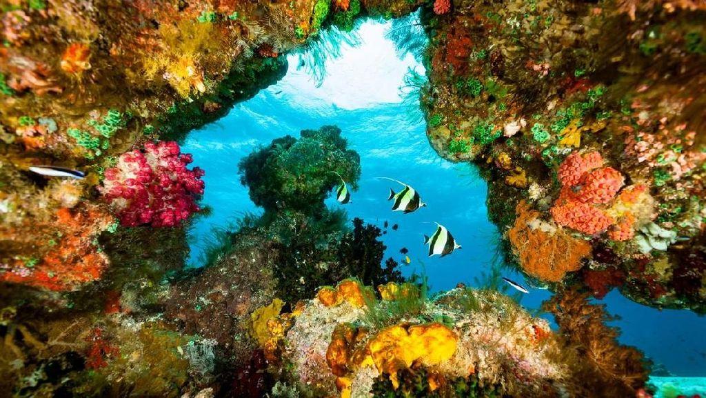 Foto: 5 Tempat Wisata Alam di Dunia yang Rusak Akibat Turis