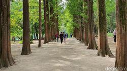10 Tempat Wisata di Korea Selatan yang Sayang Kalau Terlewati