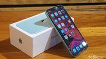 Selang Seminggu Dirilis, Kapan iPhone 11 Resmi Mendarat ke Indonesia?