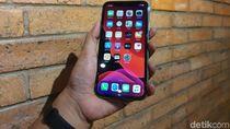 Apple Rilis iOS 13.2.3, Bawa Perbaikan Masalah Mengganggu