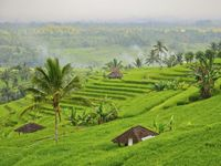 Wisata akhir tahun di Bali.