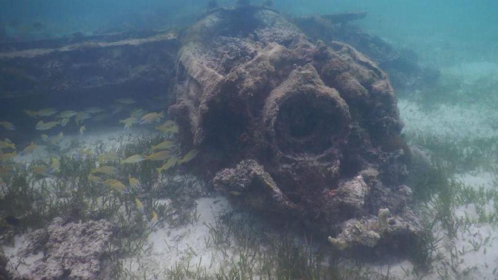 Puing Pesawat Tempur Jepang Ditemukan di Teluk Wondama Papua