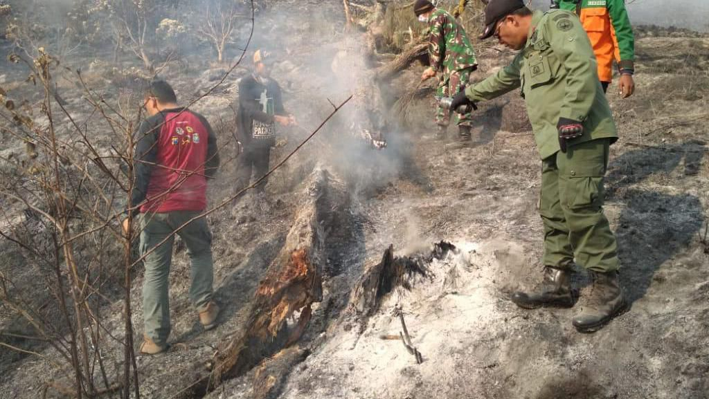 Update Terbaru Kebakaran Hutan Gunung Semeru