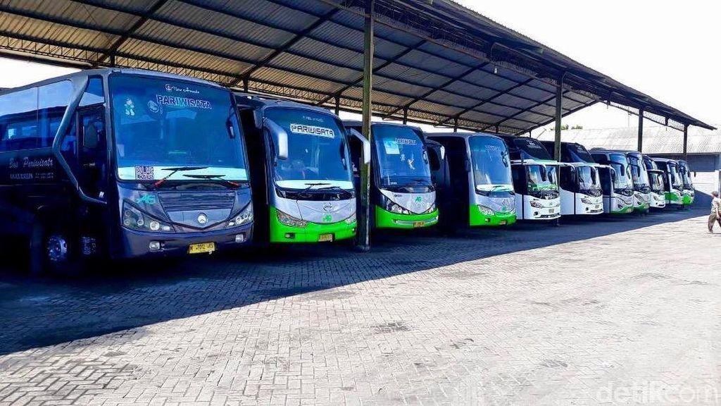 Perusahaan Beli Satu Unit Bus, Baru Balik Modal 5 Tahun Lagi