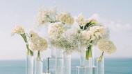 Jangan Ngutang Demi Pesta Pernikahan, Kecuali Siap Pikul Sederet Risiko Ini