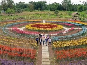 Indah Banget, Bunga di Taman Ini Ternyata Dibuat dari 3.000 Sampah Plastik