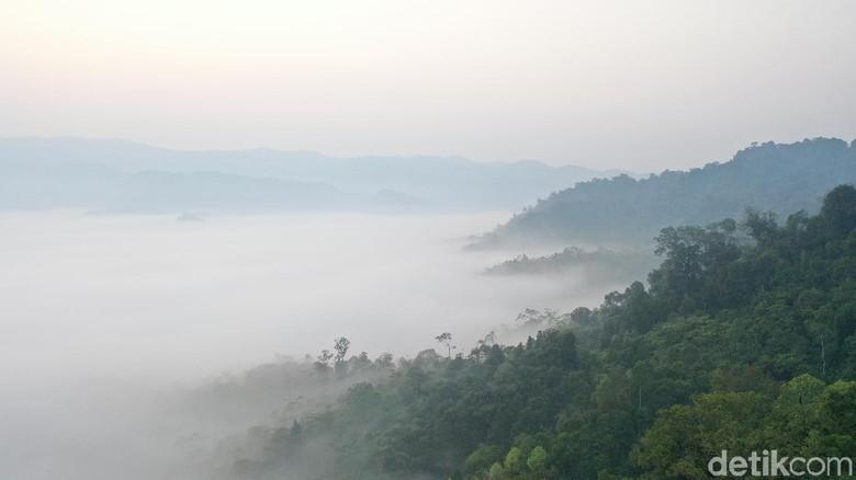 Foto Drone Gunung Luhur