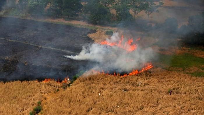 Kebakaran hutan dan lahan yang melanda sejumlah wilayah di Indonesia menarik perhatian dunia. Berbagai upaya terus dilakukan untuk memadamkannya.