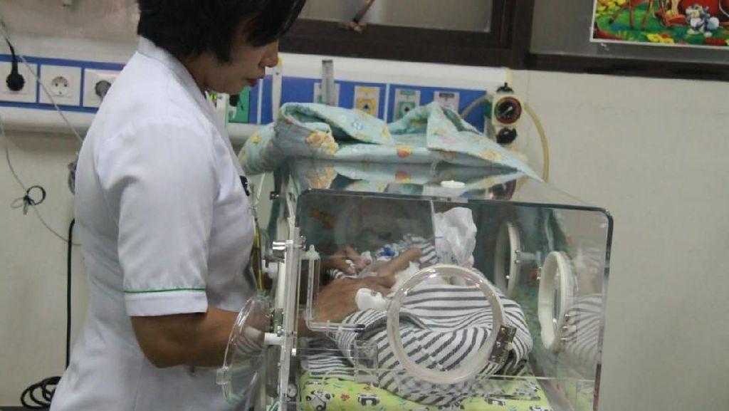 Kondisi Menurun, Bayi Berkaki dan Bertangan Empat di Bali Meninggal