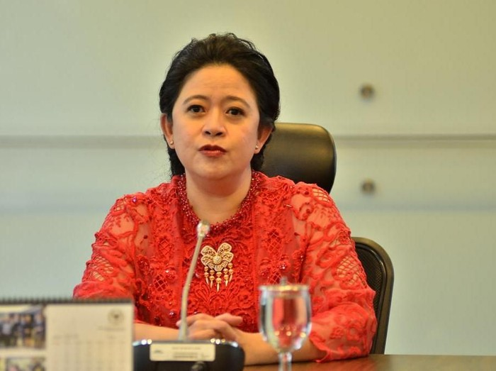 Puan Maharani (Foto: Dok.PDIP)