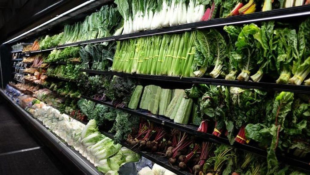 Plus Minus Diet Vegetarian yang Perlu Kamu Tahu