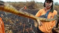 Ya Ampun, Ada lagi Ular Berkaki di Riau