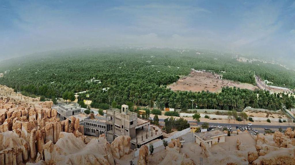Sudah Tahu? Arab Saudi Punya Oasis Terbesar di Dunia