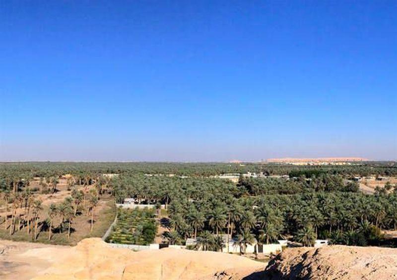 Ini adalah Osias Al Ahsa, oasis terbesar di Arab Saudi bahkan di dunia. Oasis ini salah satu dari 5 Warisan Dunia UNESCO di Arab Saudi (Foto: UNESCO)