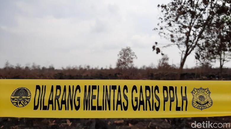 Bupati OKI Bentuk Tim Investigasi Keterlibatan Perusahan di Karhutla