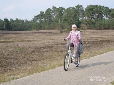 Sepeda di Taman Nasional Belanda Ini Disediakan Cuma-cuma