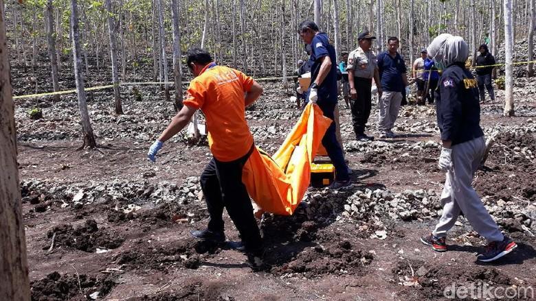 Misteri Penemuan Kerangka Manusia di Tengah Kebun Jati Gunungkidul