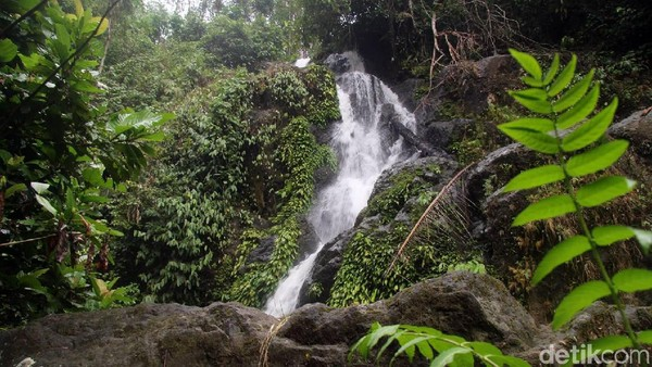 Air Terjun Limbong Miala dan Air Terjun Mangngae belum dikelola oleh pemerintah setempat. Padahal potensinya besar sekali sebagai destinasi wisata. (Abdy Febriady/detikcom)