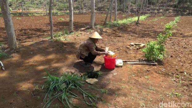 Warga di Kecamatan Rongkop, Gunungkidul mengambil air dari pipa PDAM yang bocor.