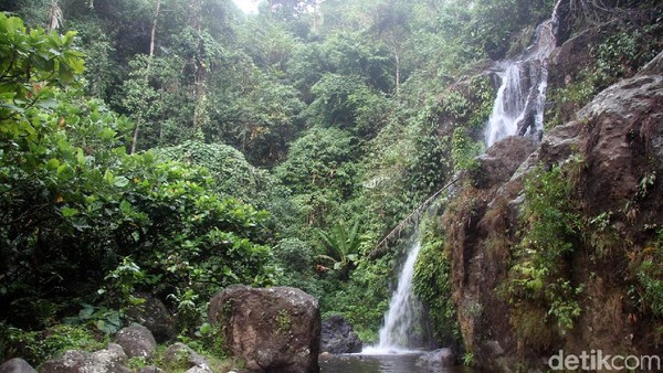 Tidak banyak traveler yang mengetahui keberadaan Air Terjun Mangngae ini. Pantas jika suasananya lebih sepi, seperti air terjun pribadi. (Abdy Febriady/detikcom)