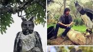Bikin Takut! Potret Elang Terbesar di Dunia