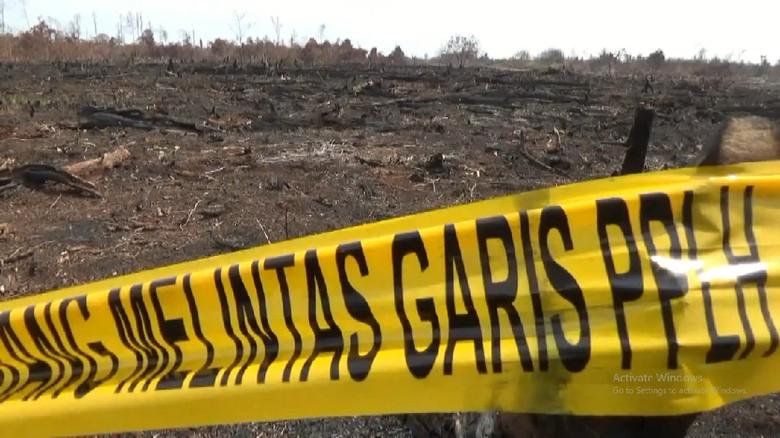 KLHK Segel Perusahaan di Sumsel Yang Sebabkan Kabut Asap di Jambi