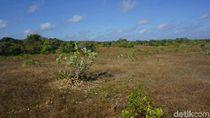 Kisah Misterius Pulau Paling Selatan Indonesia