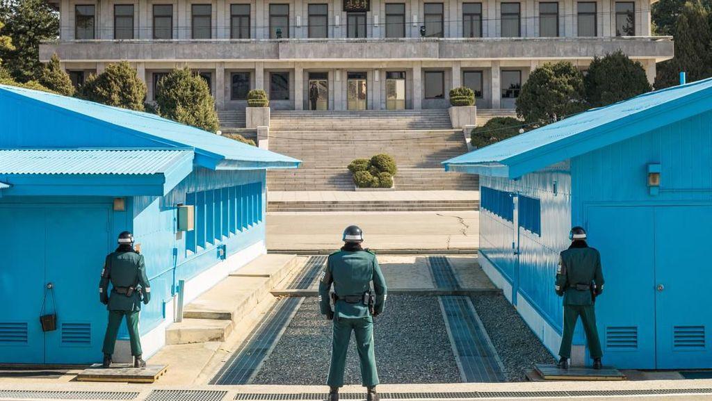 Ada Flu Babi, Wisata Perbatasan Korea Selatan dan Utara Ditutup