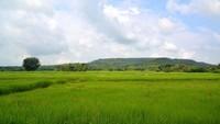 Kondisi Perekonomian Thailand, dari Pertanian hingga Pariwisata