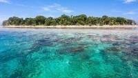 Pulau Sipadan merupakan rumah dari 3000 spesies ikan, berbagai pari dan ratusan terumbu karang. Selain itu juga merupakan populasi penyu hijau dan penyu sisik. (iStock)
