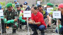 Kawasan Eks Reklamasi Pelindo di Bali Akan Dijadikan Taman Hutan Kota