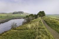 Northumberland National Park, suatu taman nasional yang dapat ditempuh sekitar 30 menit dari pusat Kota Newcastle. Lanskap perbukitannya sungguh indah! (iStock)