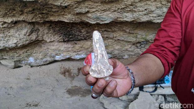 Ini Hasil Penelitian Jejak Manusia Purba di Gua Lawa Sampung