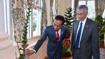 Jokowi ke Istana Singapura, Anggrek Iriana Jokowi Jadi Perhatian