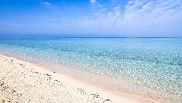 Di masa mendatang, Umluj juga akan menjadi destinasi yang turut terdampak dari proyek pariwisata Red Sea atau laut merah yang diinisiasi oleh Putra Mahkota Arab Saudi, Muhammad Bin Salman (MBS) (Twitter)