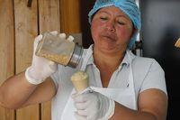 Berani Cicip? Ini Es Krim Rasa Daging Tikus Belanda yang Hits
