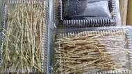 Warga Sidoarjo Raup Rp 5 Juta/Bulan dengan Kumpulkan Rumput untuk Obat