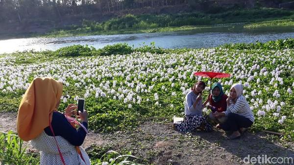 Traveler bisa langsung mengeluarkan kamera dan foto-foto di taman ini. Kalinampu Natural Park sendiri buka dari jam 7 pagi hingga menjelang Maghrib. (Pradito/detikcom)