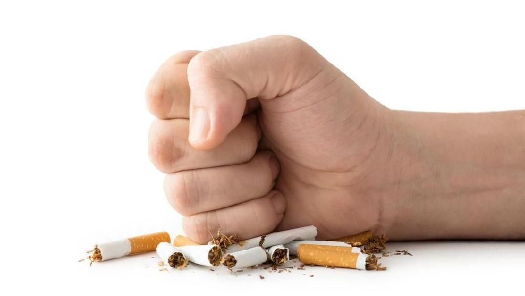 Pengakuan Dokter Mantan Perokok, Beberkan Cara Berhenti Merokok