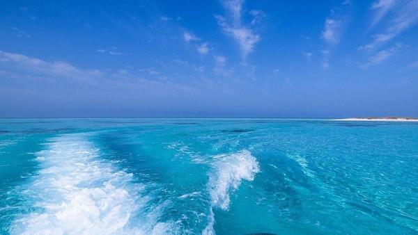 Fakta menarik lainnya, pihak Pemerintah setempat juga tidak mengizinkan kapal besar seperti cruise atau feri untuk singgah di area tersebut. Hanya kapal kecil dan wisatawan yang dizinkan untuk memancing atau berwisata di area tersebut (Twitter)