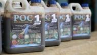 Bisa Ditiru, Warga Kumpulkan Urine Kambing Jadi Pupuk Organik